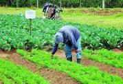 پیشگیری از عوارض مواد بیولوژیک کشاورزی
