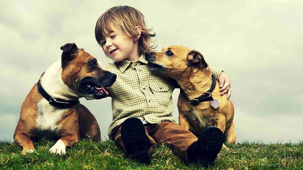 نژاد سگتان معرف شخصیت شماست (بخش اول)