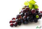 مصارف درمانی روغن هسته انگور