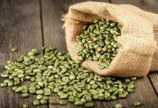 قهوه سبز و خواص شگفت انگیز آن بر سلامت!