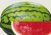 مصرف هندوانه برای این افراد مضر است