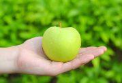 کشف یک داروی موثر در درمان سرطان خون
