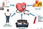 عوامل افزایش دهنده تری گلیسیرید