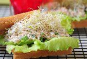 ساندویچ ماهی تن و جوانه، فست فودی مغذی