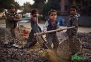 شایع ترین بیماریهای کودکان کار
