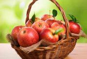 میوه تضمین کننده سلامت بدن