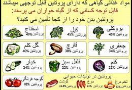 پروتئین گیاهی مناسب ترین انتخاب تغذیه ای برای بانوان