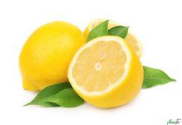 این 5 فایده شما را به سمت لیمو شیرین میکشاند