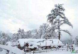 152 سانتی بارش برف در مازندارن