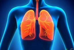 وظایف ریه در بدن انسان را بشناسیم