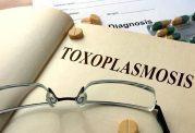 روش های مقابله با توکسوپلاسموز