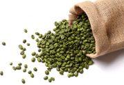 با خاصیت ها و طرز تهیه قهوه سبز آشنا شوید
