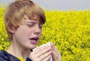 چطور از التهاب های فصلی رها شویم؟بخش دوم