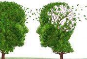 پیشگیری از آلزایمر با سبد غذایی سالم