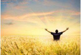 هفت چیزی که حس خوب به شما می دهند، را می شناسید؟