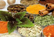 مواد خوراکی موثر در درمان و کنترل دیابت