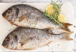 در دوران بارداری ماهی و تخم مرغ بخورید