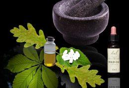درمان های طبیعی و گیاهی برای ترک مواد مخدر
