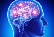 افزایش کارایی مغز با رژیم غذایی mind