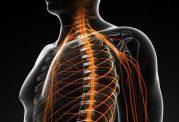 8 نشانه که شما را از بروز آسیب های عصبی با خبر می کند