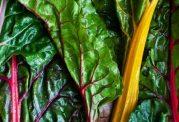 رفع عوارض یائسگی با مصرف سیب و چغندر