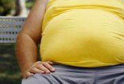تنوع غذایی باعث افزایش چربی بدن می شود
