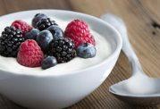 ماست پروبیوتیک و حفظ سلامت روده