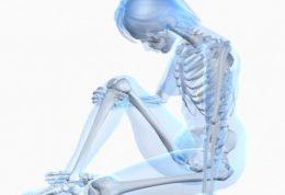 خوراکی موثر بر سلامت استخوان بانوان