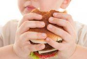 چاقی در کودکی و ابتلا به بیماری در بزرگسالی