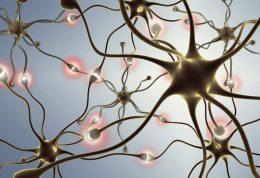مقابله با شیوع آلزایمر در سنین جوانی