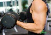 آیا کار با وزنه، تاثیری در سلامت بدن دارد؟