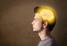 مراقبت های خوراکی از مغز