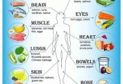 موادغذایی مناسب برای هر یک از اعضای  بدن