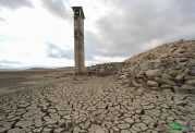 کنفرانس بینالمللی آب و محیط زیست در دانشگاه تهران برگزار می شود