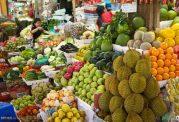 تاثیر مصرف زیاد سبزی برای زنان بلند قد