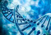 شناسایی ژن جدید «پارکینسون»