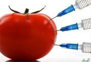 بروز سرطان سینه و ناباروری با مصرف محصولات تراریخته