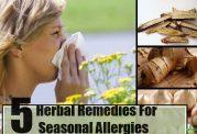 مراقبت از سیستم ایمنی برای رفع آلرژی