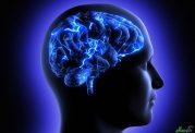 دانشمندان روسیه موفق به ساخت مغز مصنوعی شدند