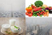 بهترین رژیم غذایی در زمان آلودگی هوا