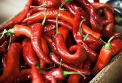 مواد خوراکی تند سبب پیشگیری از ابتلا به سرطان می شوند