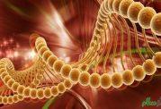 علائمی که نشان دهنده سرطان هستند