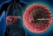 بررسی هپاتیت و انواع آن