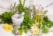 15 گیاه دارویی موثر در رشد موی سر