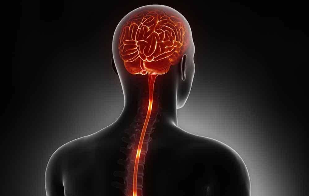 ۴ نکته که باید در مورد ALS بدانید
