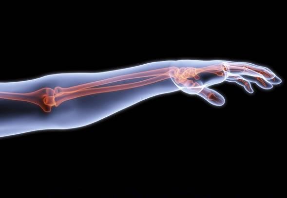 آیا بازسازی کردن اعضای بدن انسان امکانپذیر است؟