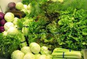 انجماد بهترین روش برای نگهداری سبزیجات است
