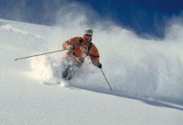 اسکی چه فوایدی برای بدن دارد؟