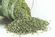 خاصیت هایی که در گیاه رازیانه وجود دارد