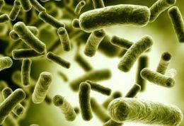 آیا معضل میکروب های مقاوم به آنتی بیوتیک قابل حل است؟
